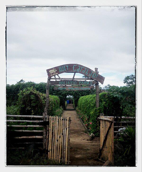 holistic farm