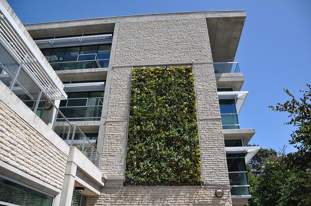 Reducing garden footprint through vertical gardening teresay vertical garden building solutioingenieria Images