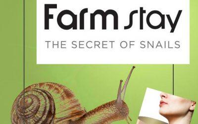 Discover the Secret of Snails through Farmstay