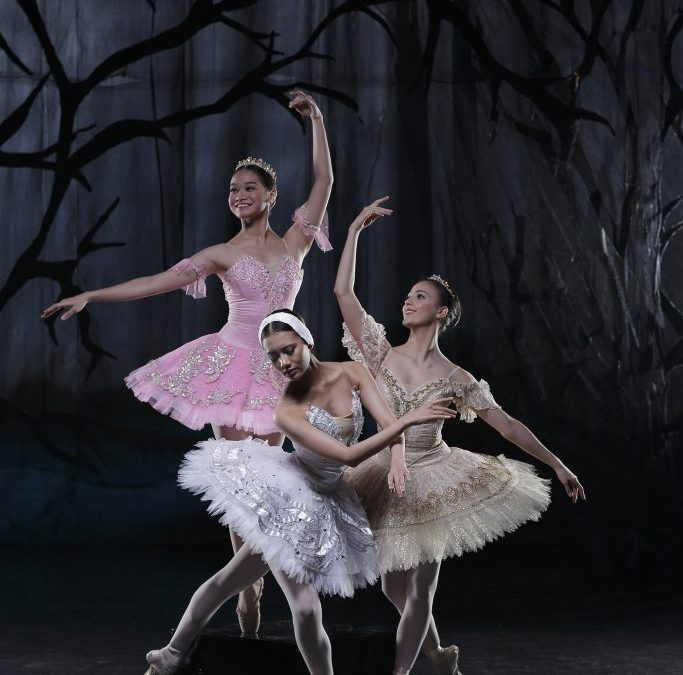 The Swan, The Fairy, and The Princess: Enjoying Classical Ballet